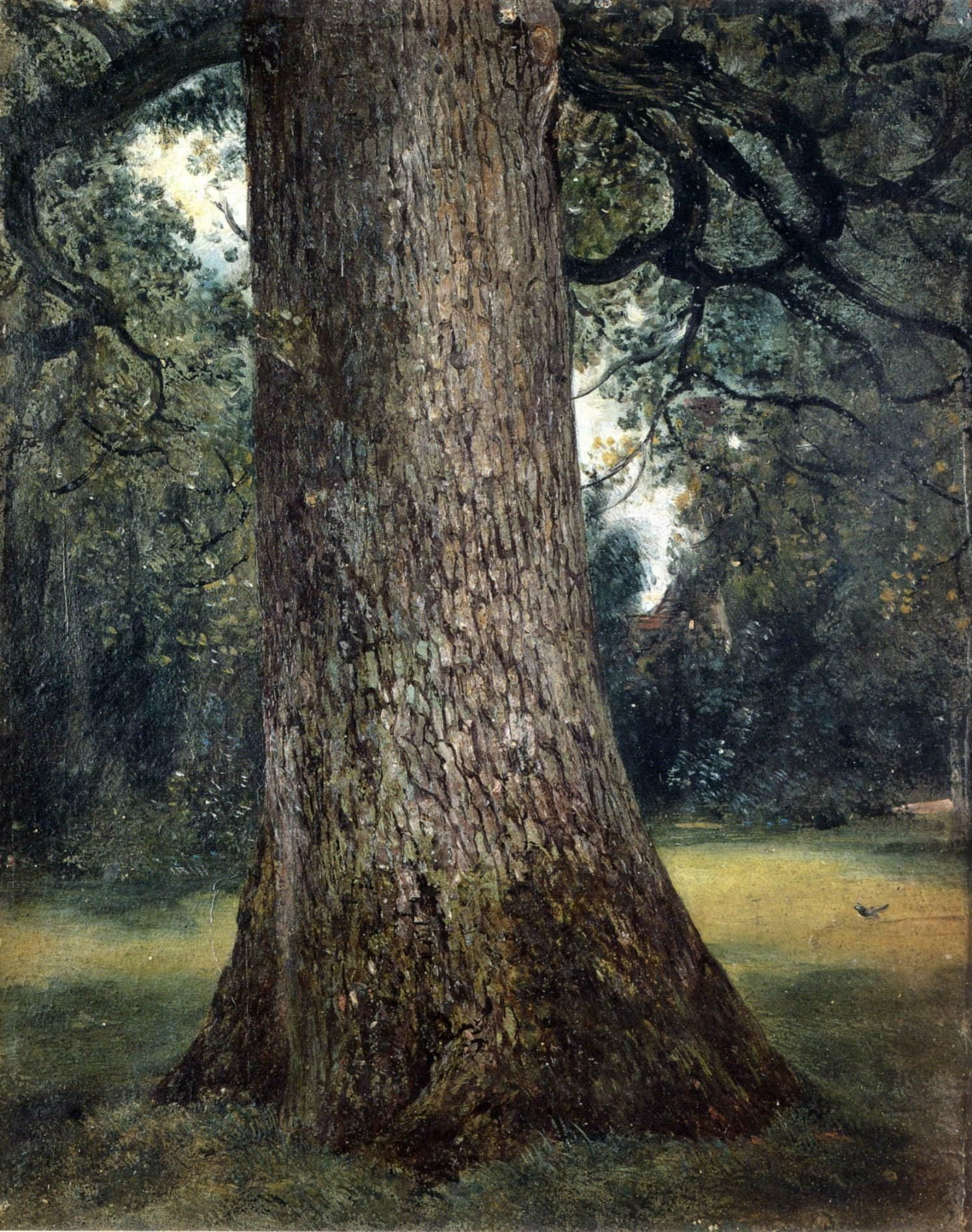 John Constable Tree Trunk (C 1821) Oil On Canvas London,