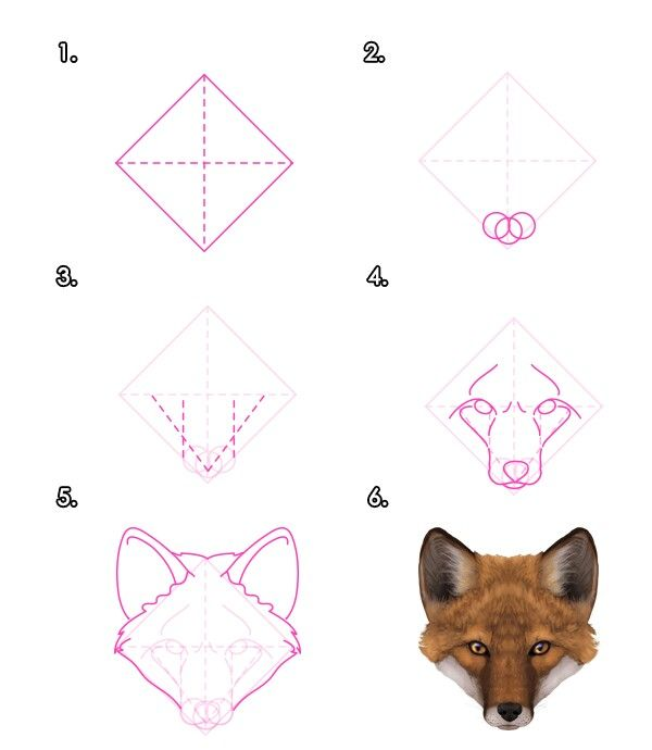 How to draw a fox face | Fox drawing tutorial, Animal ...