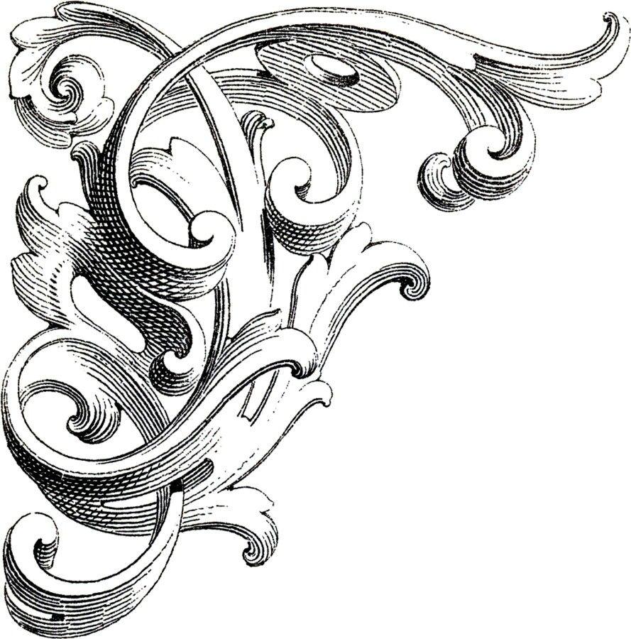 corner  ornament drawing graphics fairy scroll design