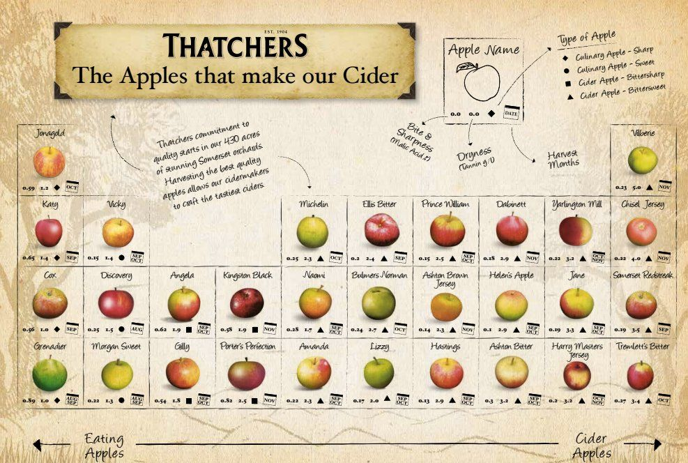 periodic table of cider - Periodic Table Tin Apple