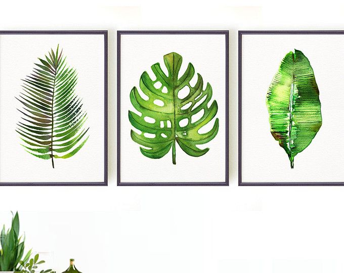 Palm Leaf Watercolor Painting Set 6 Different Palm Tree Leaves