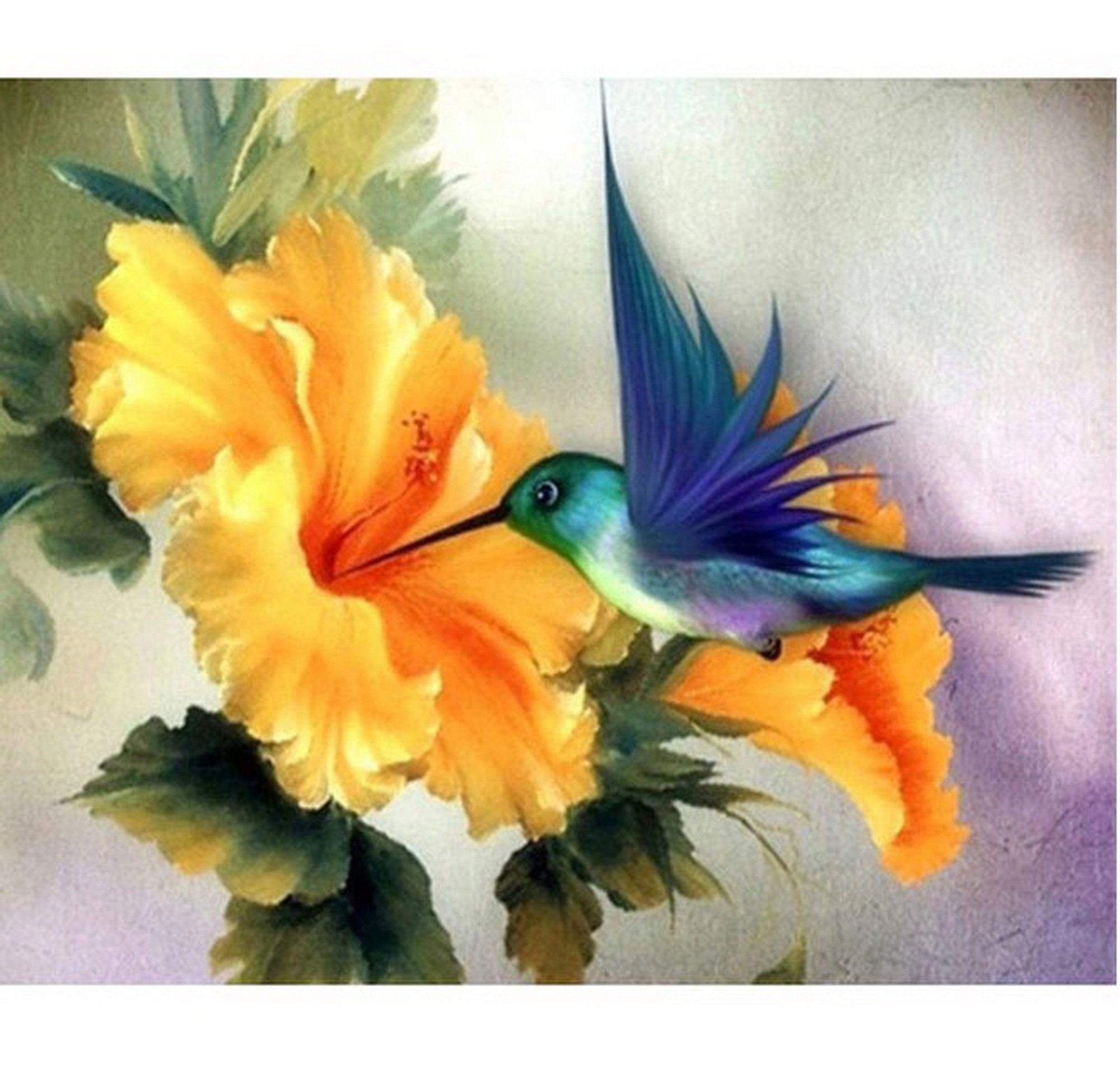 Hummingbird Paint Number kit, Home Decoration, Col