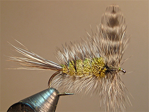 x 6 Fly Fishing Flies Adams Super Fly Bass, Bream, Trout, Salmon