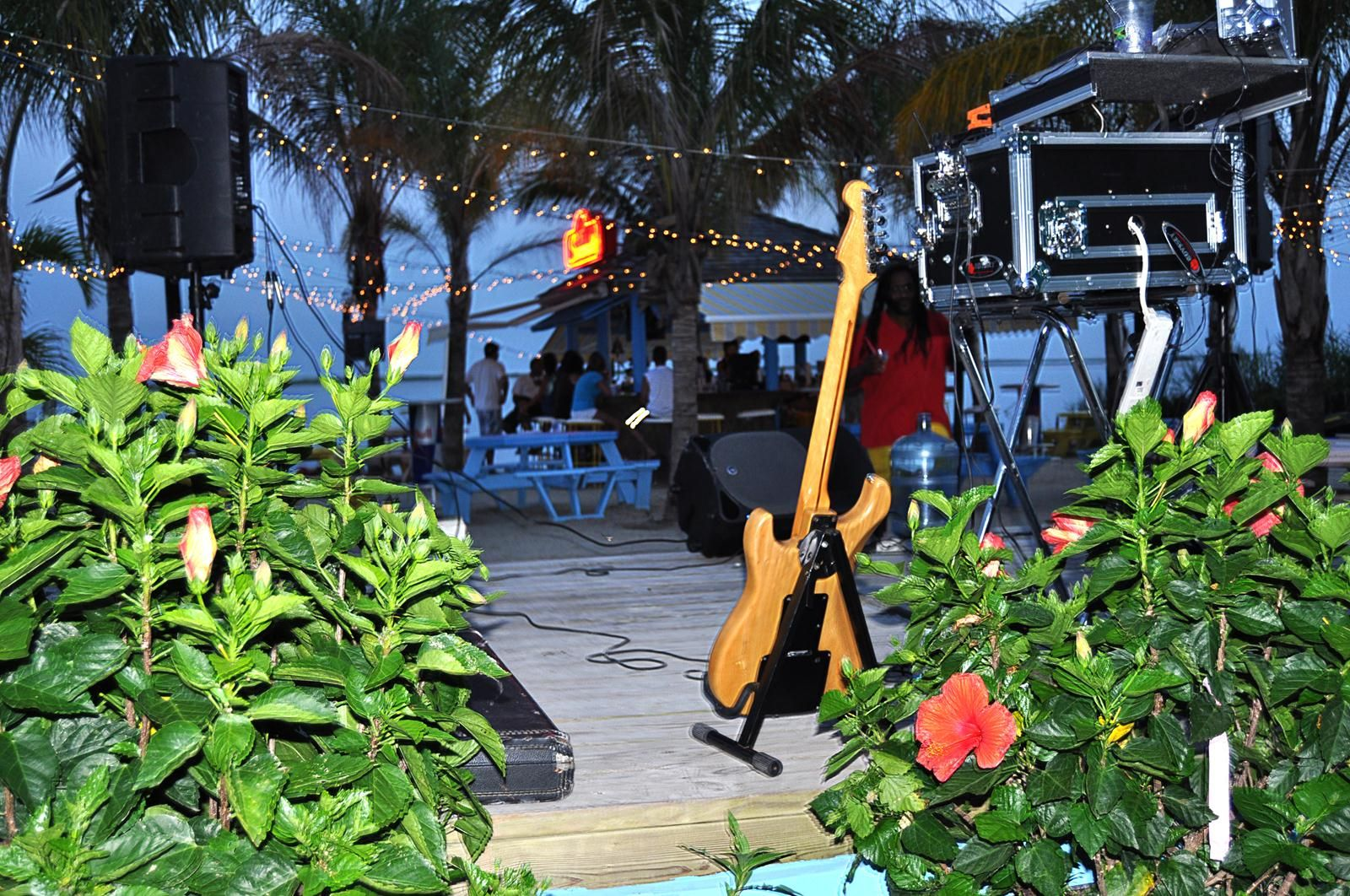 tropical flowers & acoustic music live at the waterfront