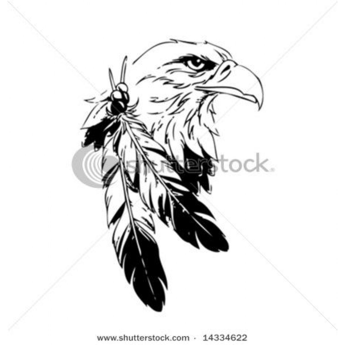 Native American Eagle Feather Drawings feathers on animal
