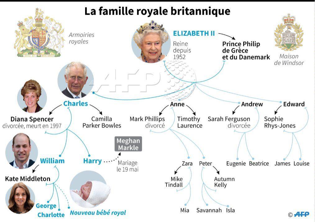 Resultat De Recherche D Images Pour Arbre Genealogique Famille