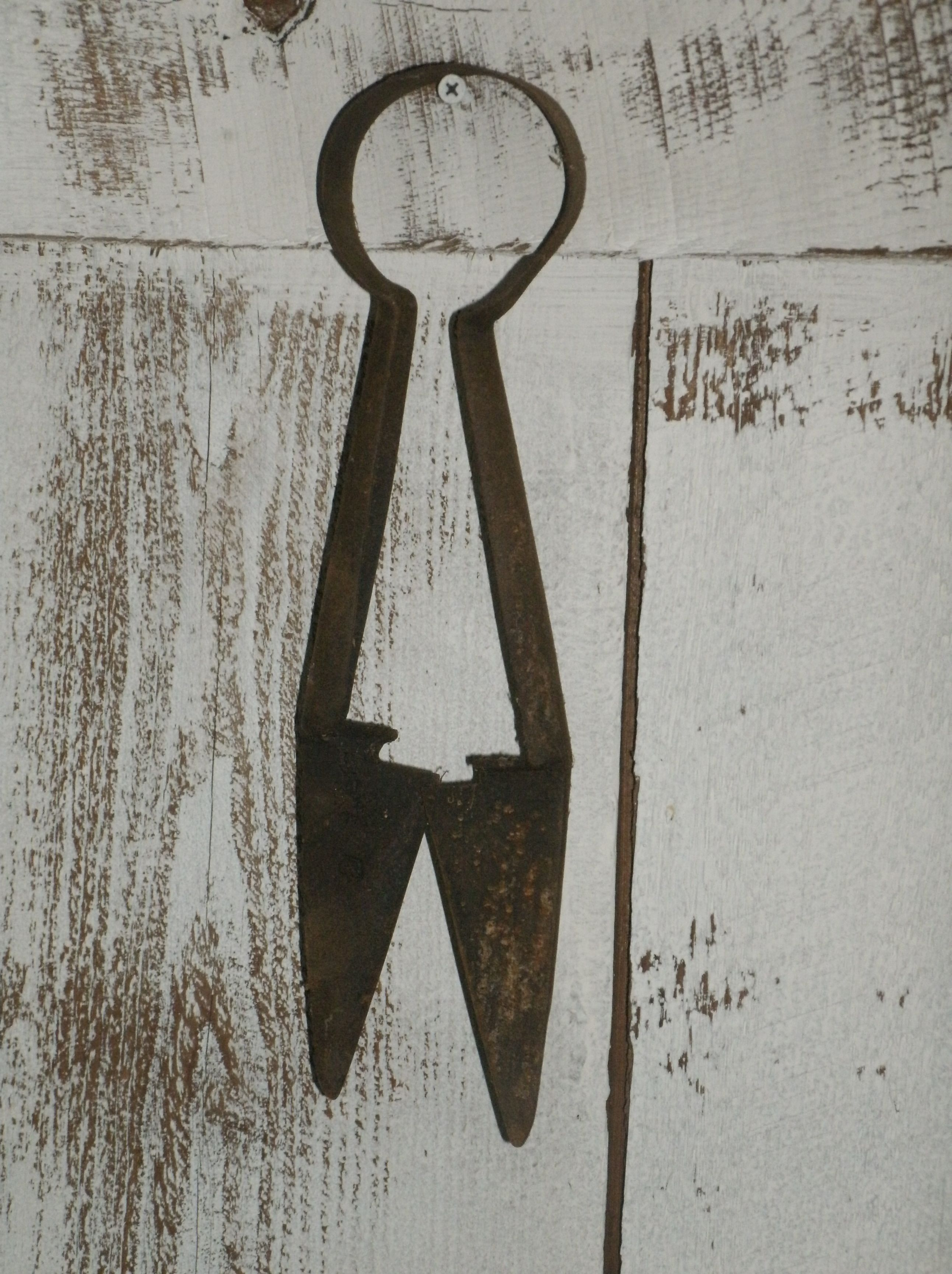 My Antique Sheep Shears With Images