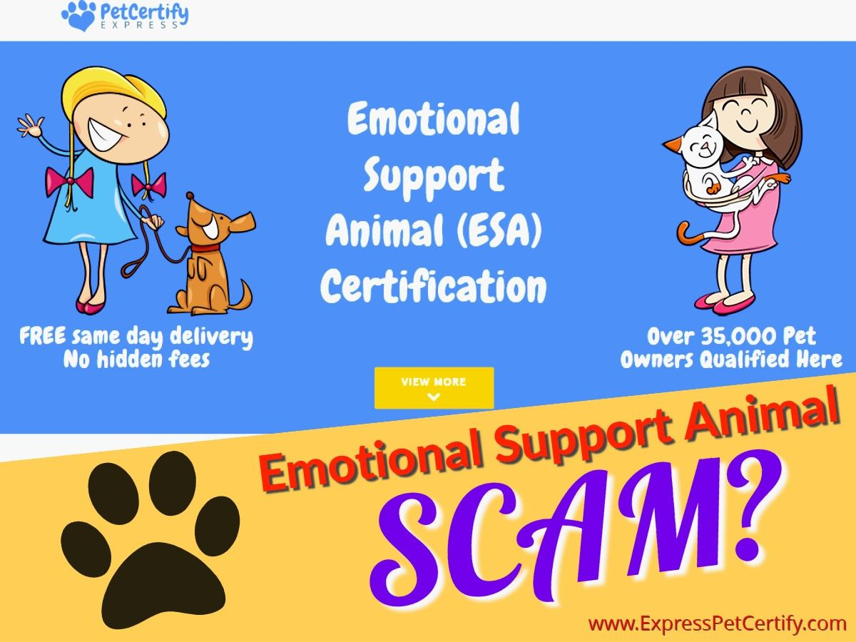 Emotional Support Animal Letter from