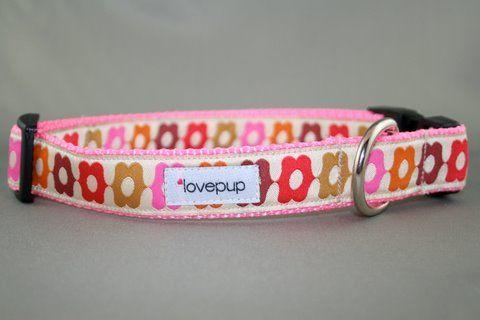 Pink Calliope Collar