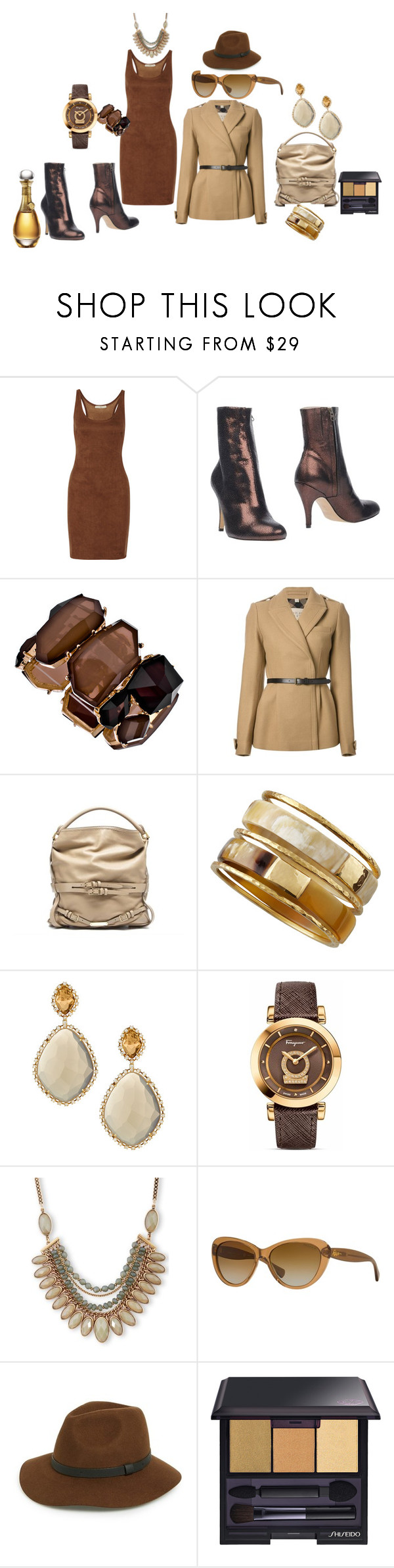 """""""Meetings All Day"""" by blujay1126 ❤ liked on Polyvore featuring Halston Heritage, Nora, Blu Bijoux, Burberry, Ashley Pittman, Vianna B.R.A.S.I.L, Salvatore Ferragamo, Lucky Brand, Ralph Lauren and Sole Society"""