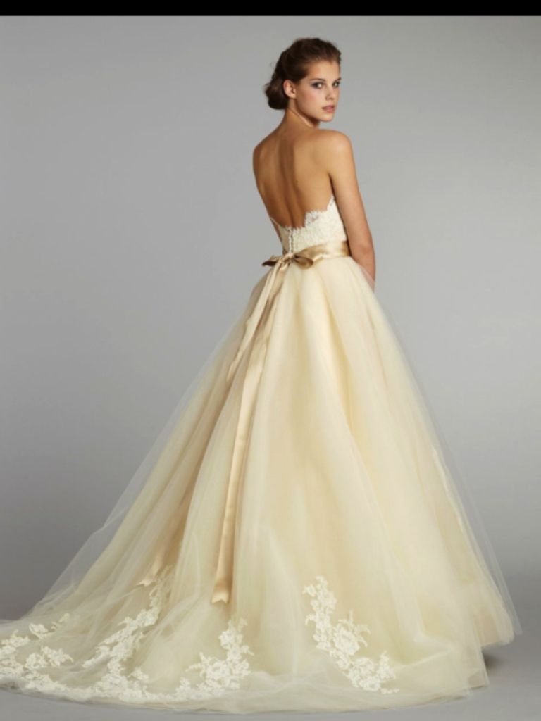Cream Colored Wedding Dress Wish I Knew What The Front Looked Like