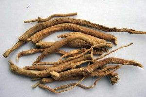 Ashwagandha contains many beneficial chemicals, such as alkaloids, choline, withanolides, amino acids and different types of natural sugar.