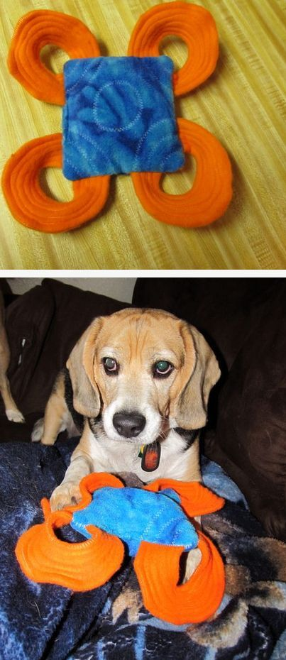 44 Really Cool Homemade DIY Dog Toys Your Dog Will Love ...