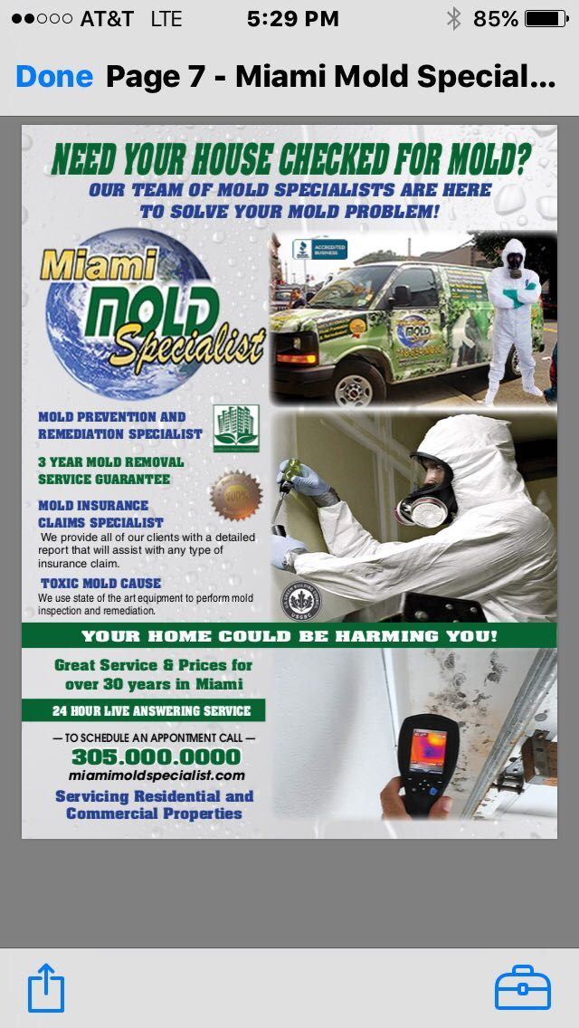Miami Mold Specialist Is A Multi Certified Eco Friendly Mold Remediation Company That Provides High Tech Mol Mold Prevention How To Remove Removal Services