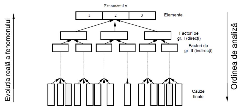 diagramă financiară