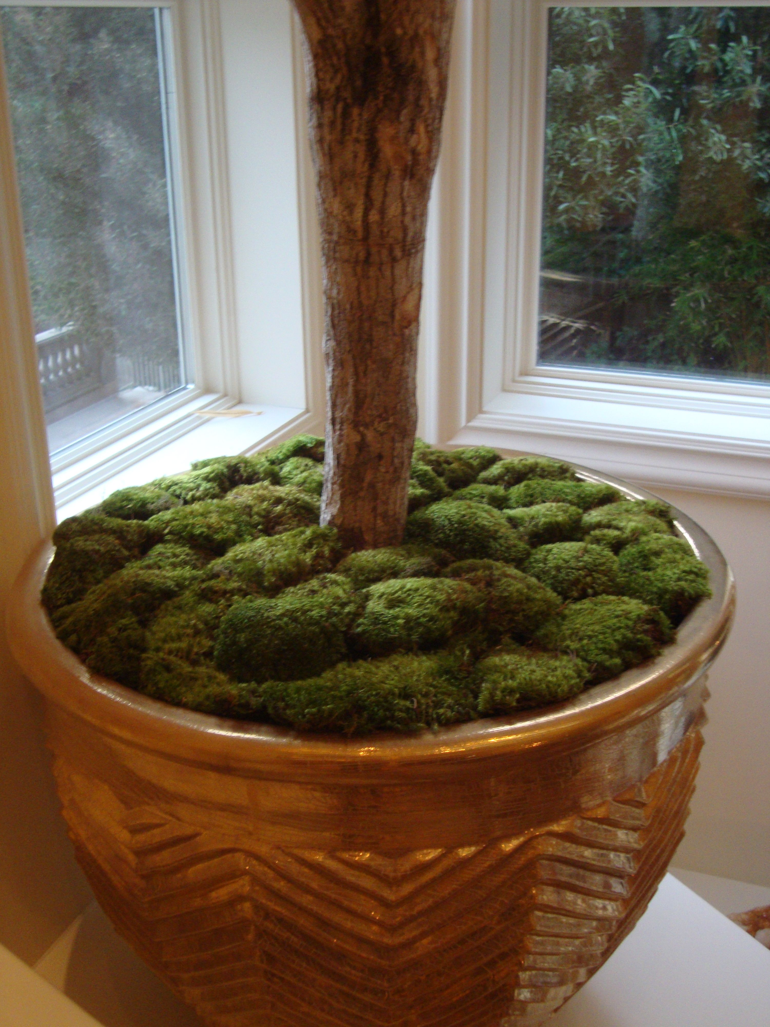 GILDEN PLANTER & MOSS fit for a 2 story Song of India tree