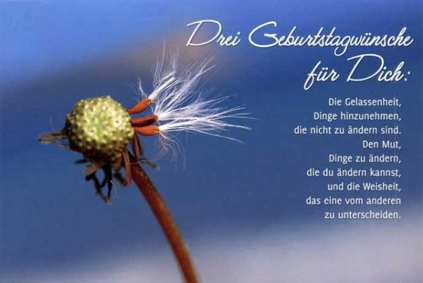 Niveauvolle Spruche Zum Geburtstag Kurze Und Lange Lustige Und