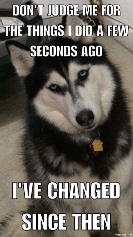Husky Change.  Lol.