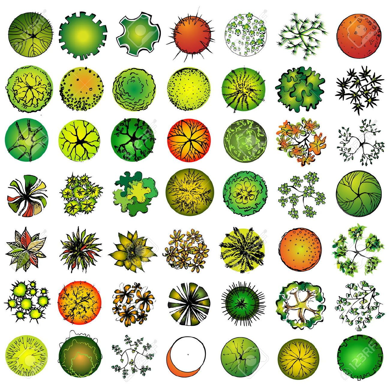 Plant Stock Photos Images, Royalty Free Plant Images And Pictures ... for Plant Top View Vector  242xkb