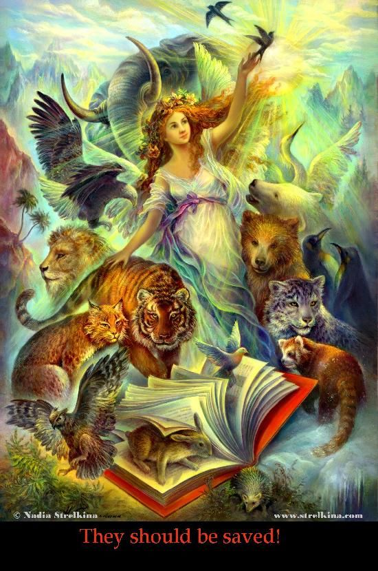 Nadezhda Strelkina Gallery Red Book