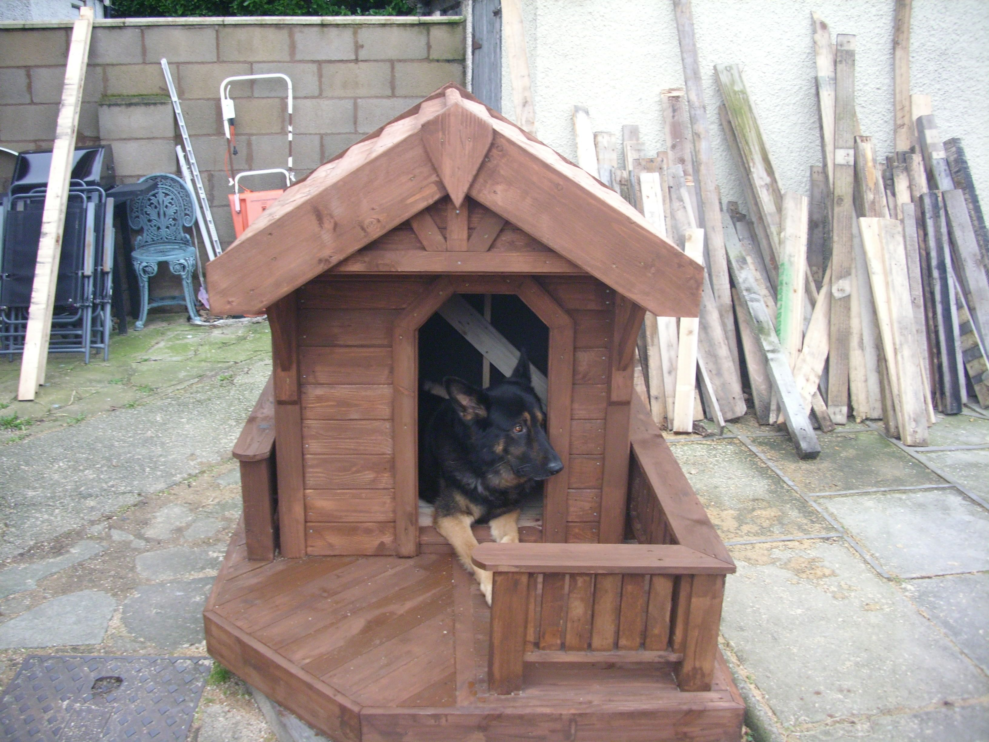 Come Costruire Una Cuccia pin by the woodshack wales on hand crafted pet items   dog