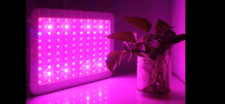 1000 Watt Led Hydroponic Grow Light Medical Plants Herbs Seedlings Indoor Bright Growlights Growlight Grow Ledgrowligh Led Grow Lights Grow Lights Led Grow