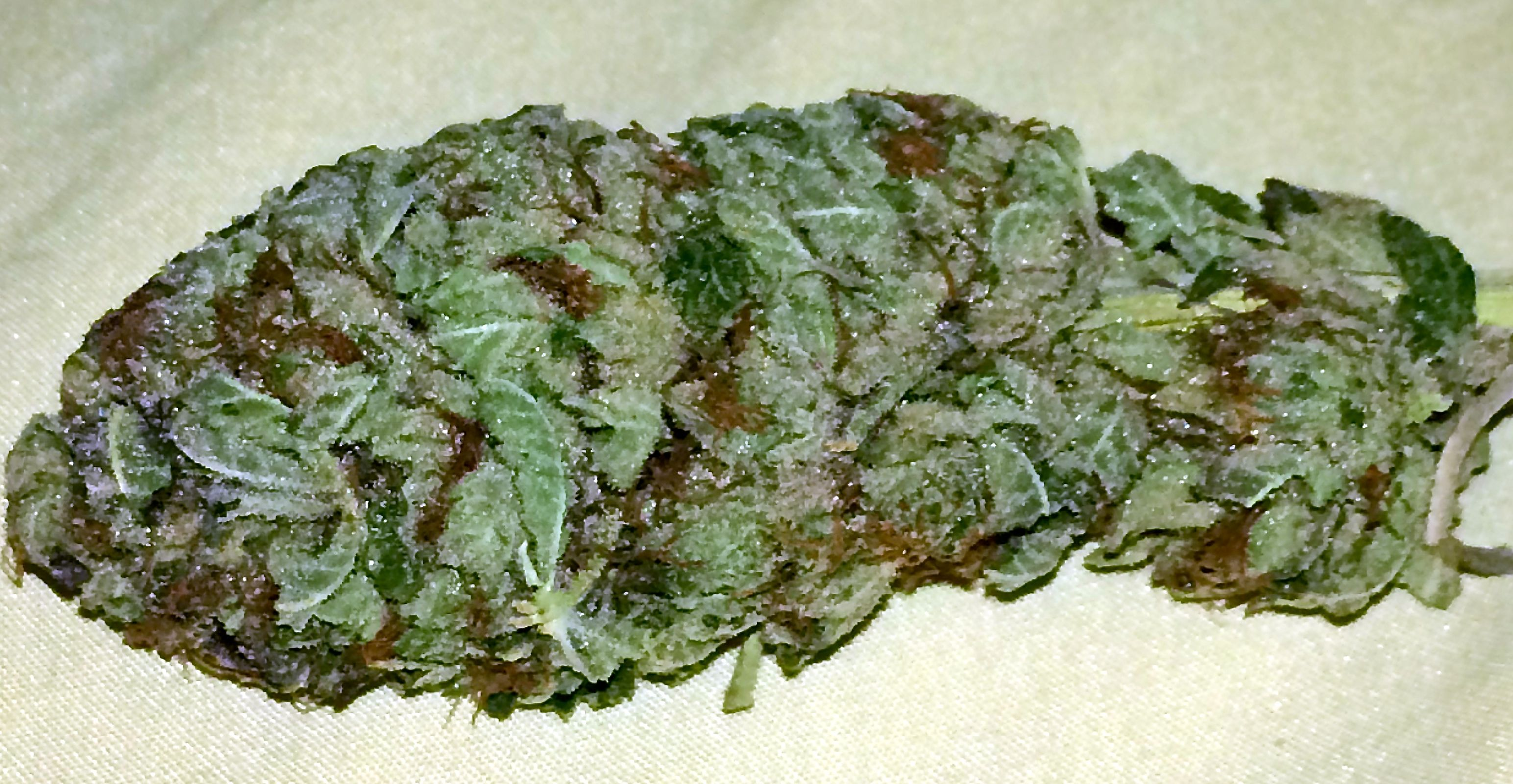 Cadillac Purple is a heavy indica strain that is popular among users  seeking true body relaxation