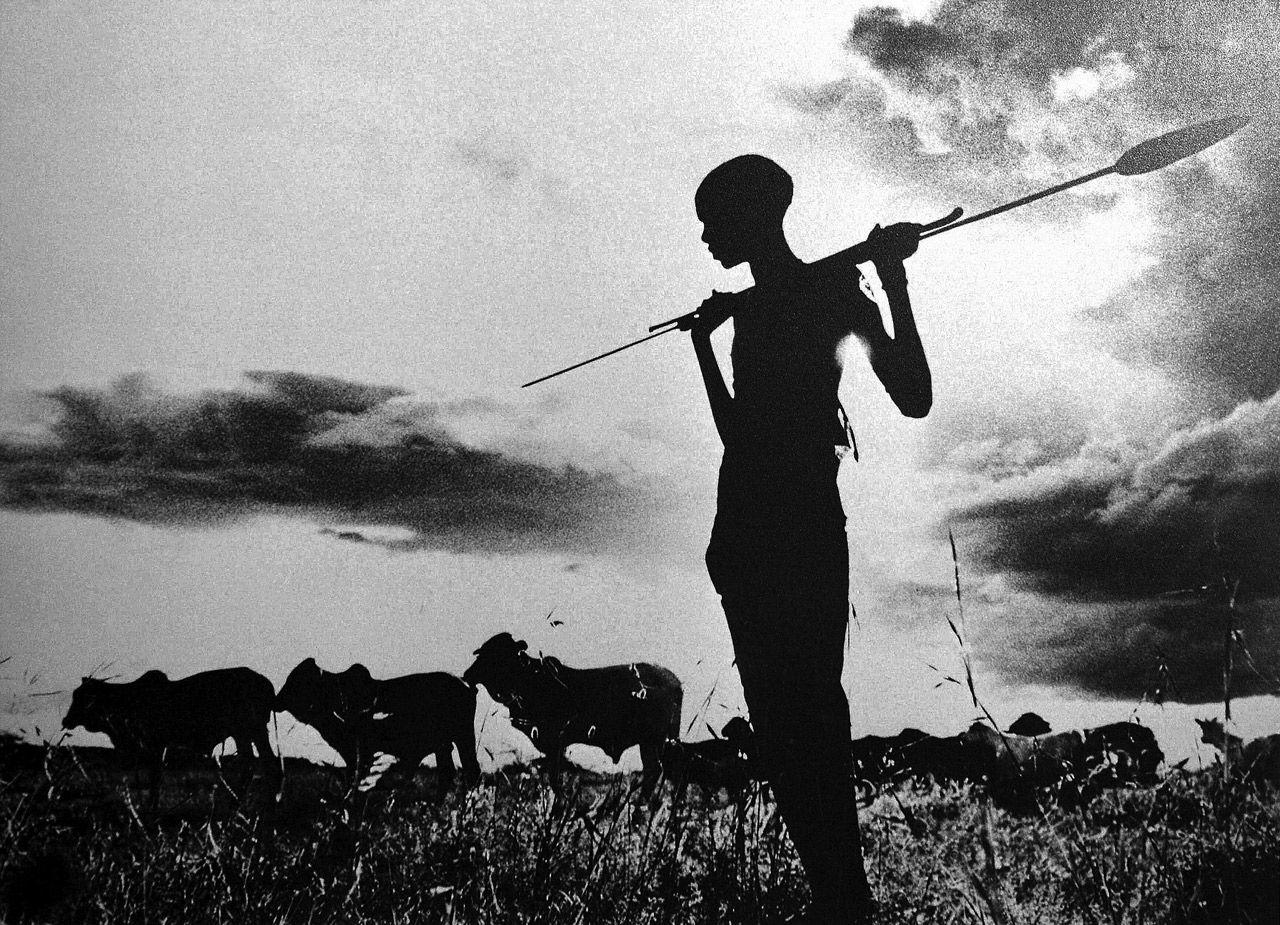 Samburu cattle herder at sunset, Kenya    photo by Mirella Ricciardi; Vanishing Africa series, 1967