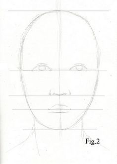 Drawing Lesson For Beginner Artists Proportions Of The Face Front View Step 3 Guidelines Realistic Drawings Pencil Portrait Drawing Lessons
