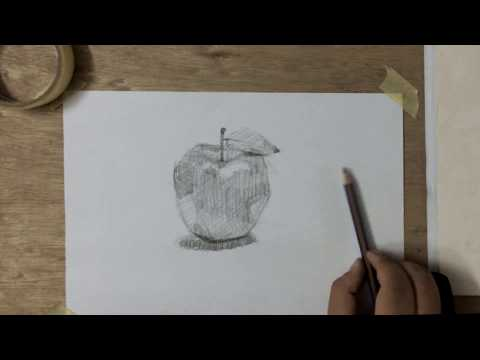 تعليم رسم اسكتش اقلام رصاص Mr Fine Artist تعليم الرسم Youtube
