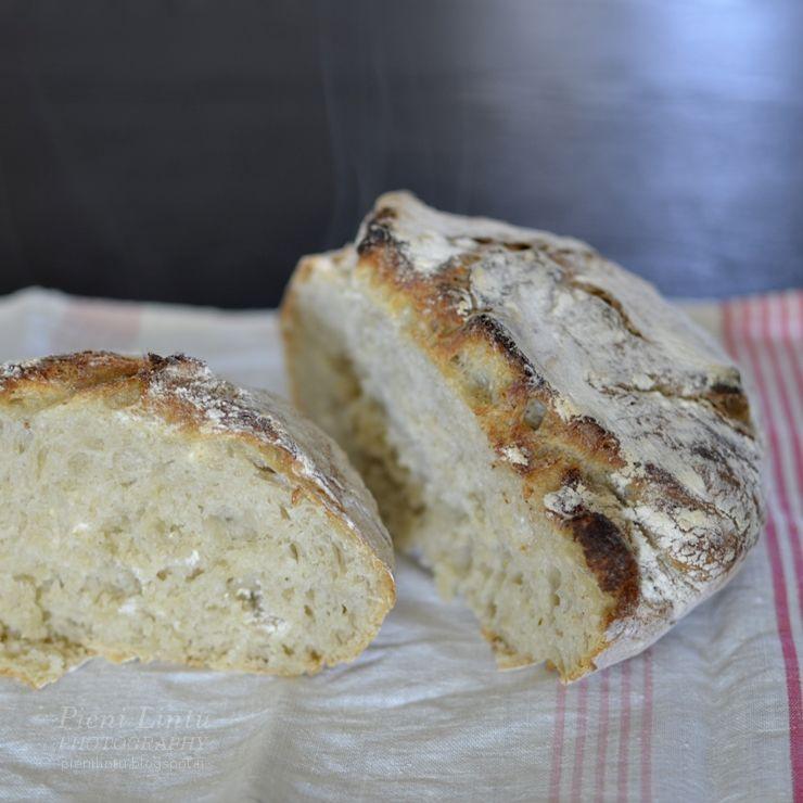 http://www.pienilintu.blogspot.fi/2014/05/baking-for-dummies-easy-bread-recipe.html
