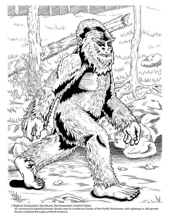 Cryptozoology Coloring Book With Images Bigfoot Illustration