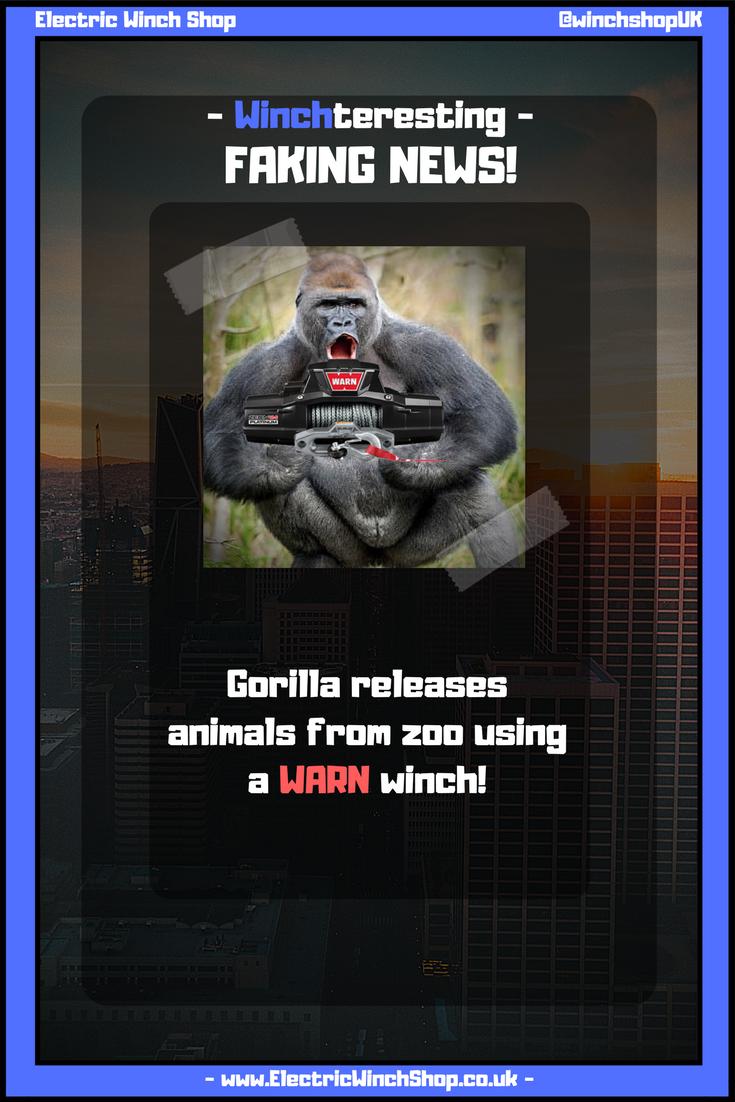 Gorilla Winch Best Chimpanzee And Image Photo Hd 2017 Wiring Diagram