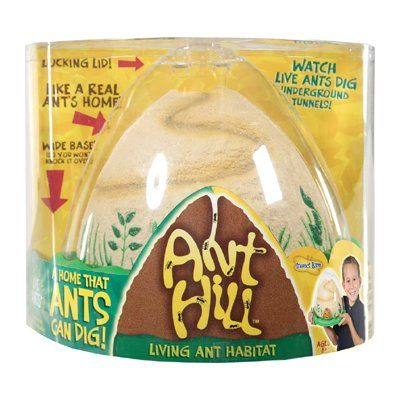 Insect Lore Ant Hill Habitat