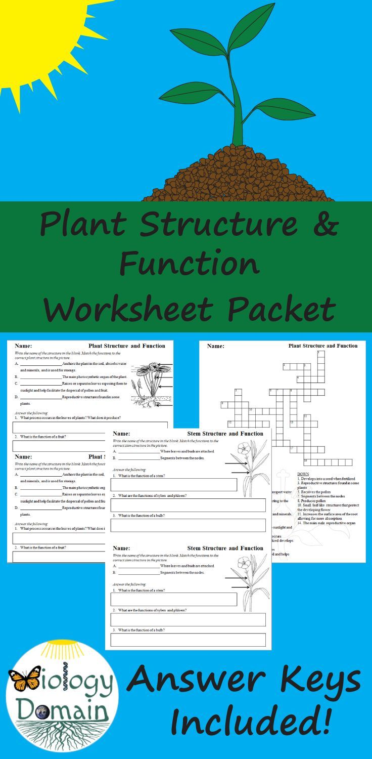Worksheets include basic plant structures, root structures ...