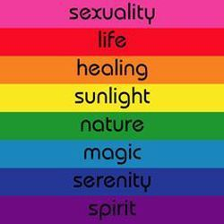 What Does The Rainbow Flag Means To You Pride Flag Colors Pride Flags Lgbtq Flags