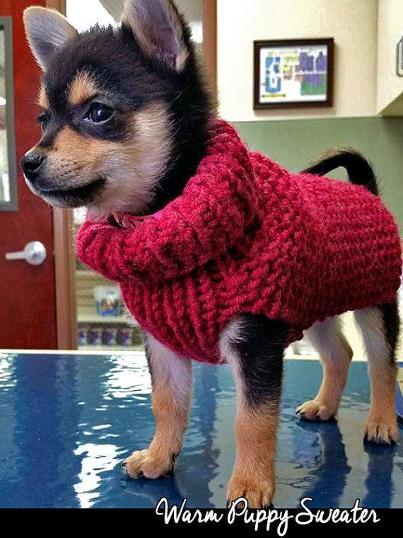 Warm Puppy Sweater Knitting Pattern | Patrones para suéter ...