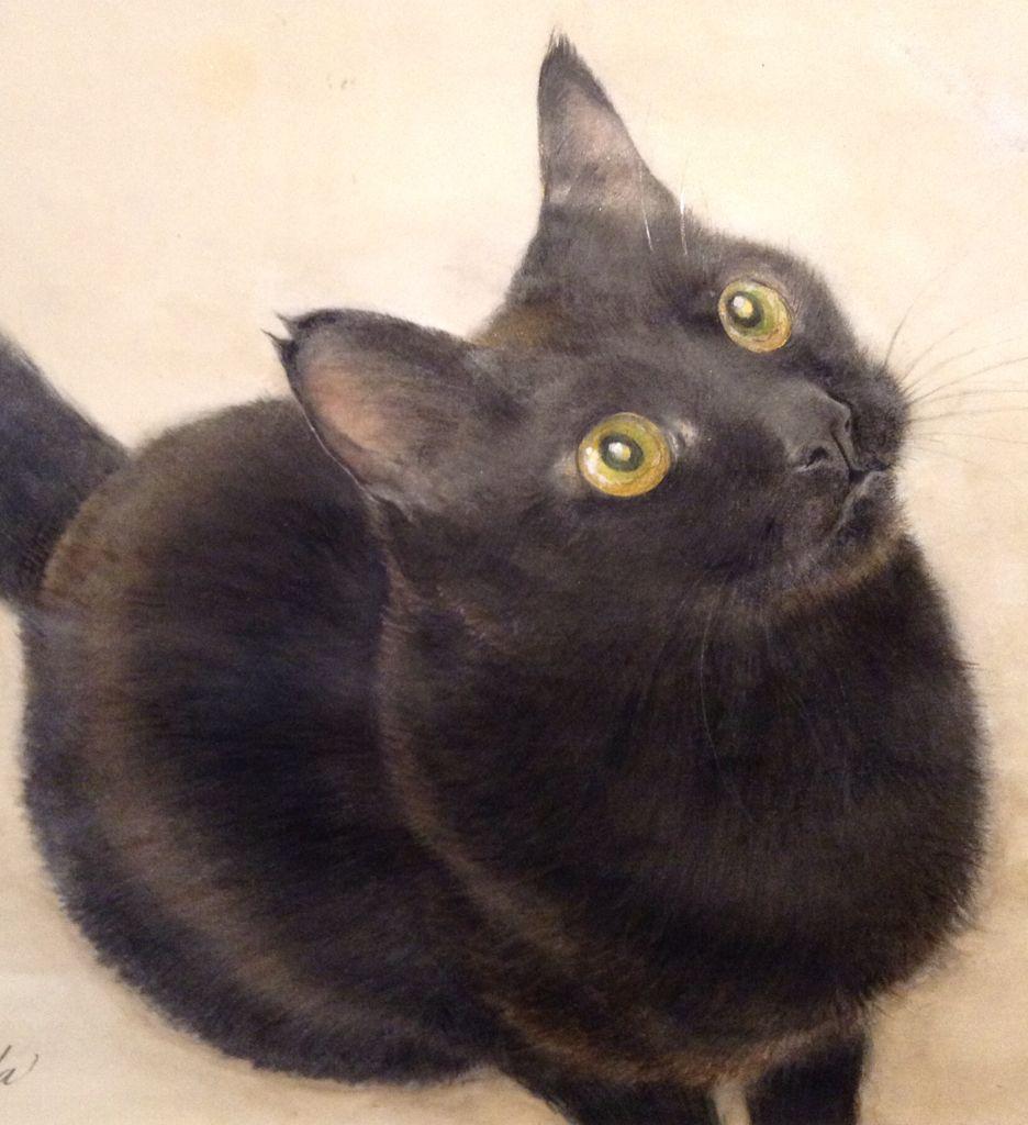 Black Cat ❤️ Suzu Ai original painting color pencil,Japanese ink (墨 sumi )