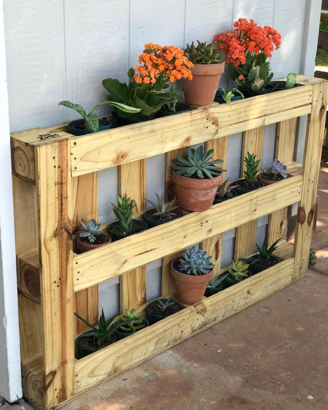 Diy wooden pallet plant stand serves your indoor and