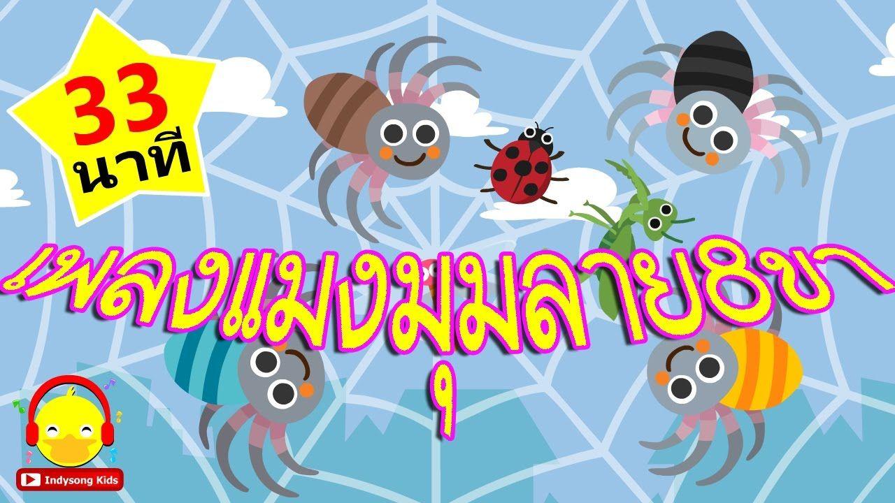 เพลงแมงม ม แมงม มลายต วน น แมงม ม 8 ขา เพลงเด กน อย 33 นาท Spider So แมงม ม การ ต น เพลง