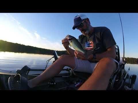 Quick Tip Fall Bass Fishing Fall Bass Fishing Bass Fishing Fish