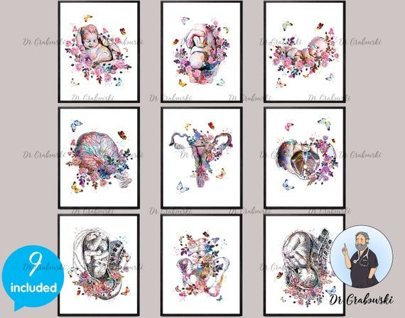 22+ Baby Shower Gifts Pregnant Woman Art Gift Baby in Womb Drawing Pregnancy and Obstetrics Poster Gynec