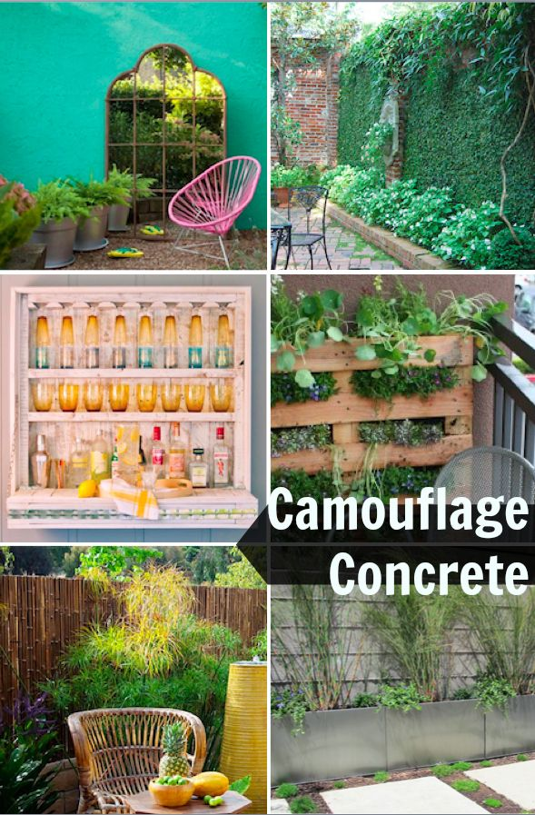 Have an ugly concrete wall outside some ideas to hide it · fence ideasbackyard ideasgarden