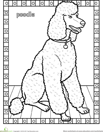 Poodle Coloring Page  Poodle Dog pattern and Embroidery