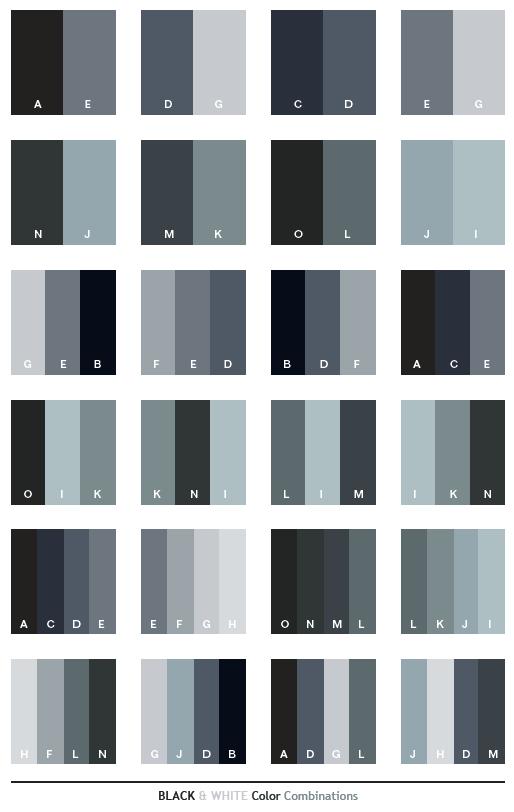 Color Scheme Black White Schemes Combinations Palettes For