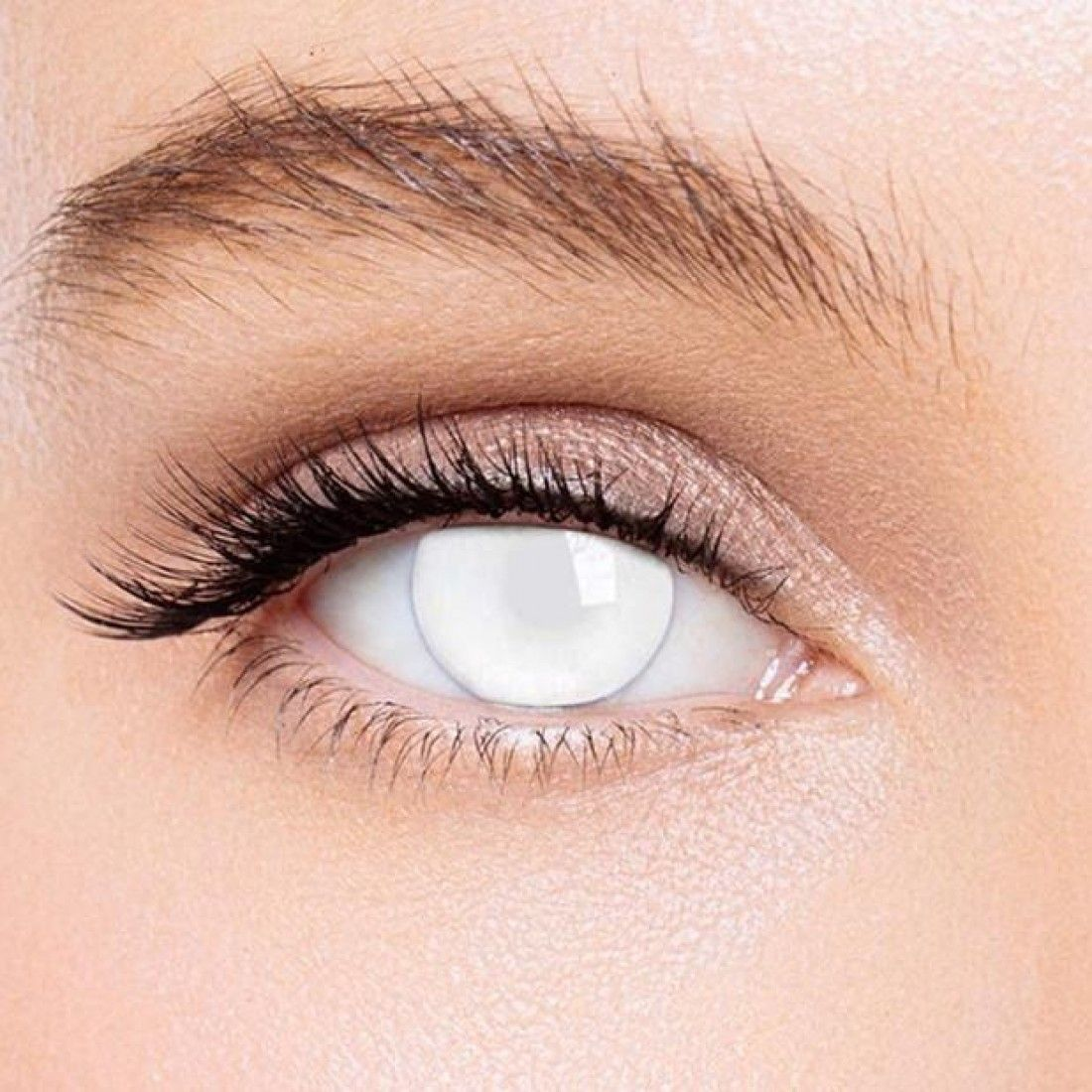 Kateeye Blind White Special Effect Colored Contact Lenses In 2020 Contact Lenses Colored Halloween Contact Lenses White Contact Lenses