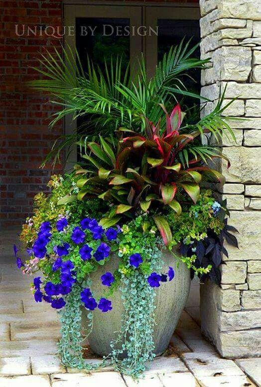 Pin by Laila Na on Gardens & green | Pinterest | Garden ideas ...