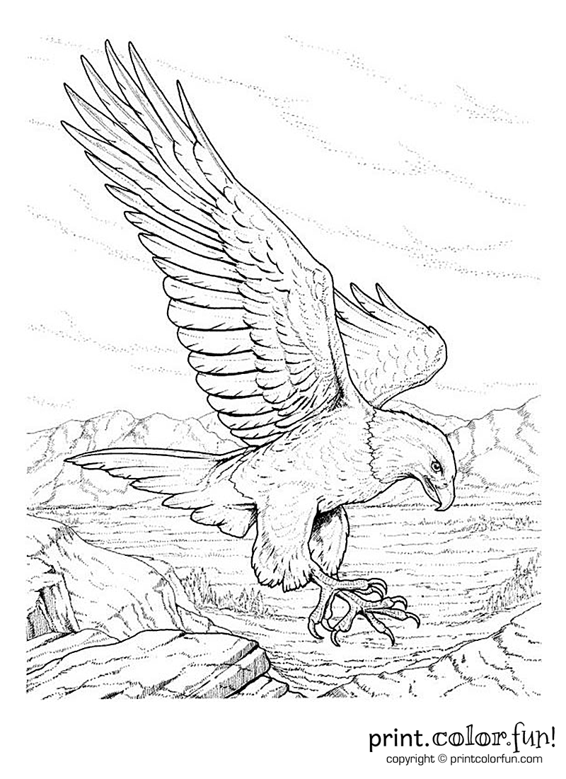 memorial day coloring pages | Free printables, coloring pages ...