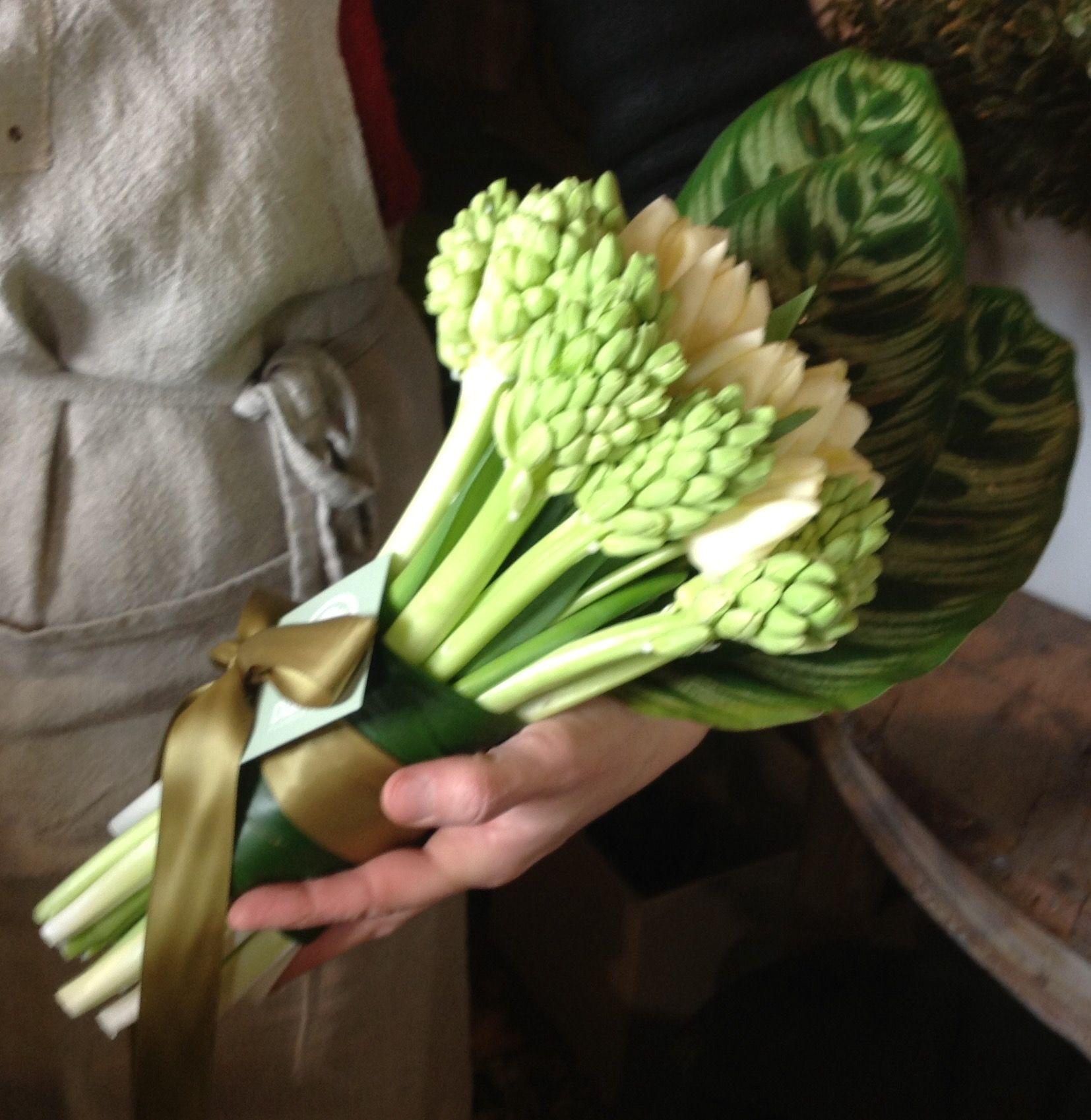 Giacinti & Tulipani DIANTHUS Flower Store