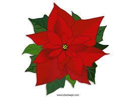 Disegnare Una Stella Di Natale.Stelle Di Natale Disegni